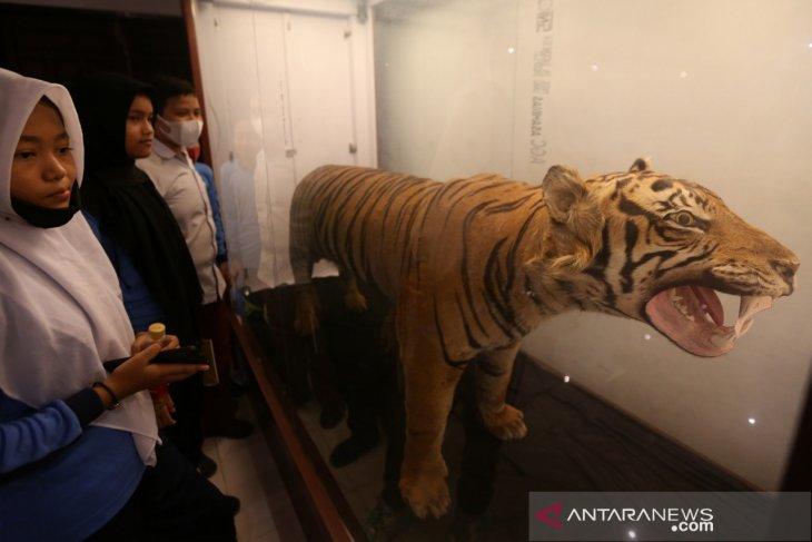 Edukasi Satwa Di Museum Aceh