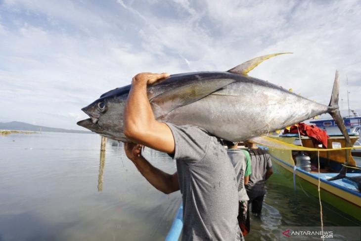 Tim SAR cari nelayan hilang kontak di Pulau Buru begini kronologinya