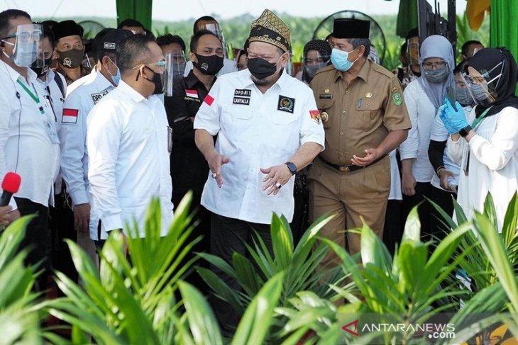 Ketua DPD RI puji upaya Bengkulu stabilkan harga TBS sawit