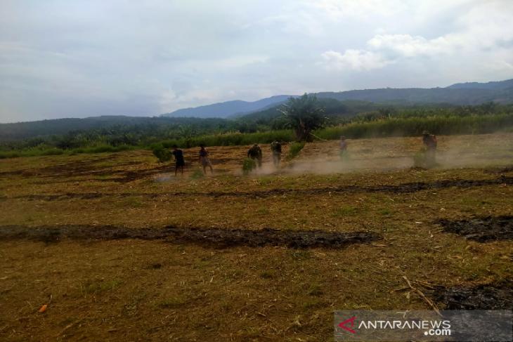 Petani Aceh Tenggara diamankan atas dugaan pembakaran lahan