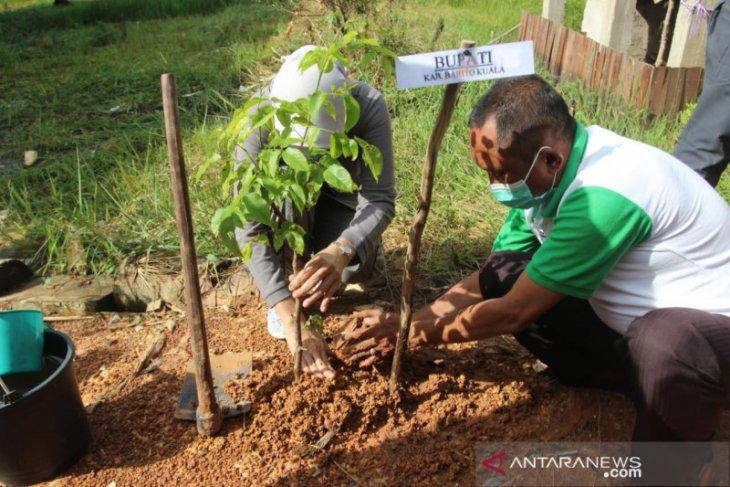 Pemkab Batola tanam 700 pohon di kawasan insinerator