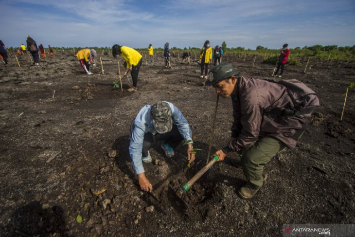 South Kalimantan plants one million trees in all districts and cities