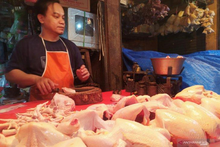 Kenaikan harga daging ayam di Jatim masih dicari penyebabnya