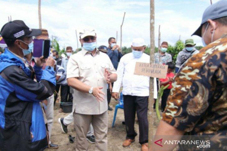 Masyarakat bertanya rahasia Gubernur Erzaldi mampu naikkan harga lada