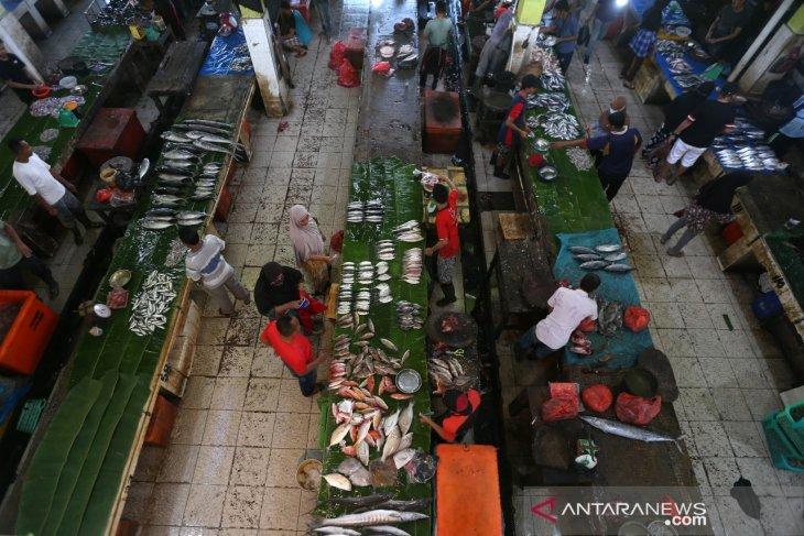 Persediaan Ikan Laut Berkurang