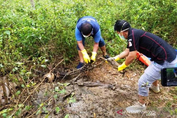 Hilang 43 hari, warga Nagan Raya ditemukan jadi kerangka di kebun karet