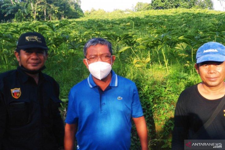 Penyaluran Dana Desa Kaltim mencapai Rp122,52 miliar