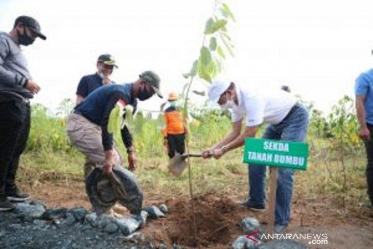 Tanah Bumbu plants 5,000 trees in Gunung Tinggi
