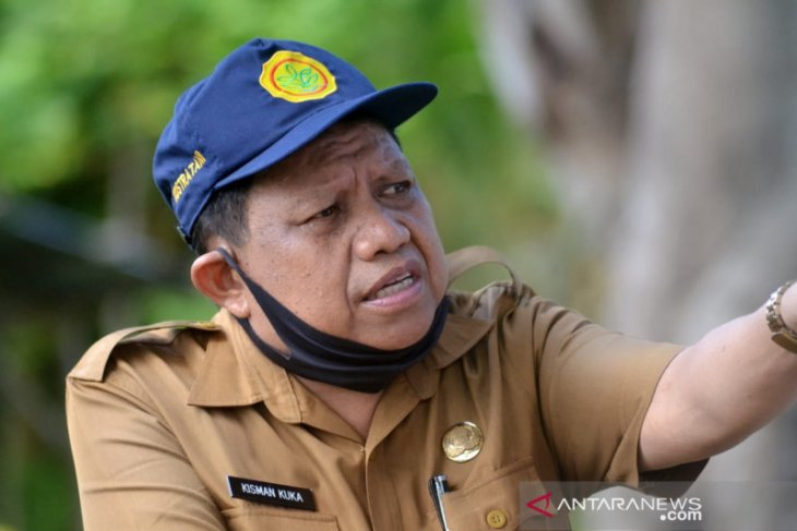 Gorontalo Utara optimalkan pengembangan jagung hibrida