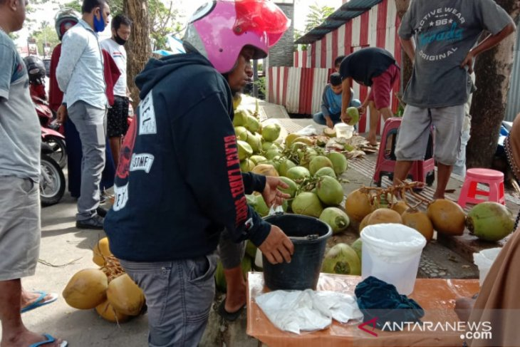 Pedagang buah kelapa muda di Kota Ambon panen rejeki