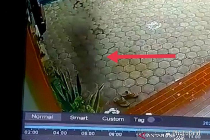 Seram! Diduga babi ngepet terekam CCTV di Meulaboh saat bulan puasa