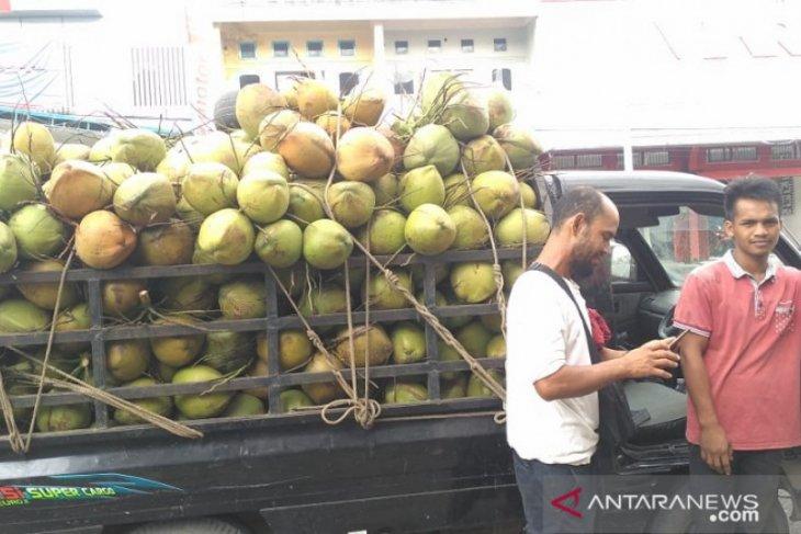 Permintaan kelapa muda di awal Ramadhan di Kota Jambi tinggi