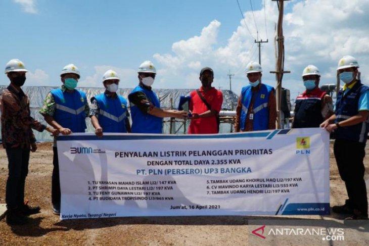 Tingkatkan Produktivitas, PLN Babel Penuhi Kebutuhan Listrik untuk 7 Tambak Udang di Bangka