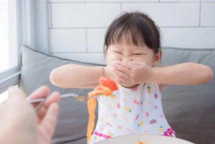 Anak pilih-pilih makanan karena kebiasaan ibu saat hamil