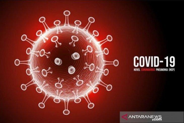 Inilah pengetahuan tentang asal-usul COVID-19