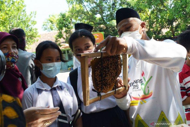 Budi Daya Lebah Madu di Sekolah