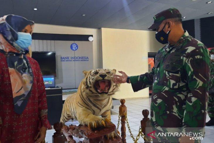 Korem Gapu hibahkan opsetan harimau sumatera ke Museum Siginjei untuk edukasi