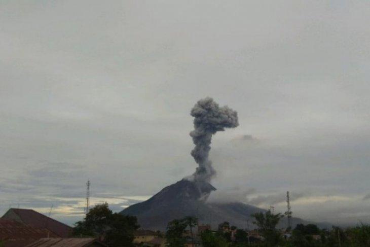Erupsi Sinabung luncurkan abu vulkanik setinggi 2.000 meter