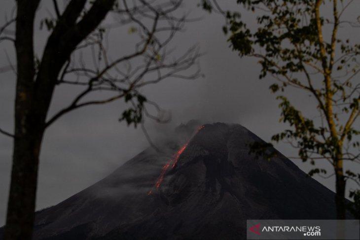Gunung Merapi meluncurkan awan panas  dan lava pijar ke barat daya
