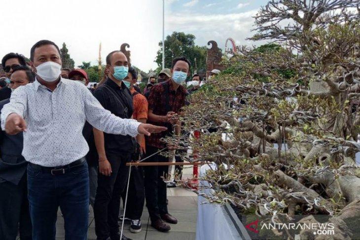 Bupati Gianyar buka pameran bonsai berskala nasional (22 April-2 Mei 2021)
