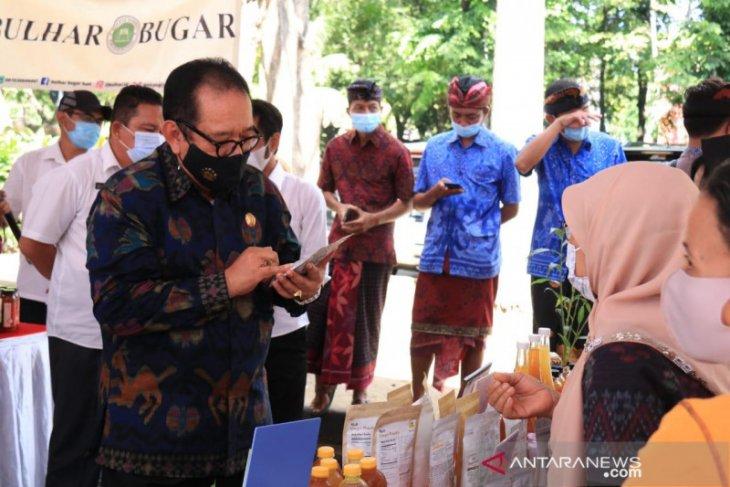 Wagub ingin usada Bali jadi alternatif pengobatan masyarakat
