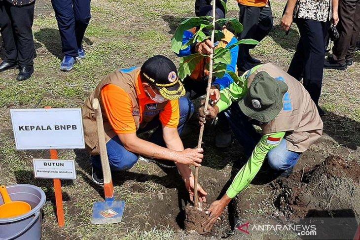 Millions of tree seedlings should be planted on coast: BNPB