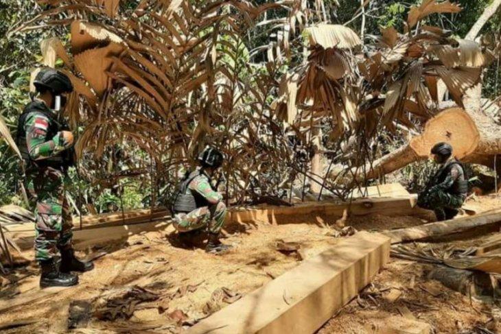 Satgas Pamtas amankan kayu ilegal di perbatasan RI-Malaysia