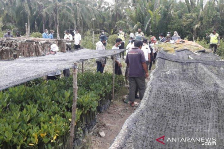 Pengunjung ekowisata Mangrove Park di Mempawah turun drastis selama pandemi