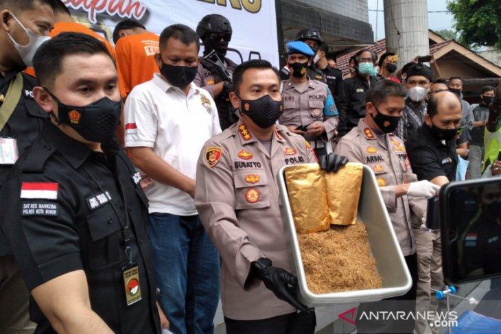 Produksi dan peredaran tembakau di Bogor gorila berhasil dibongkar polisi