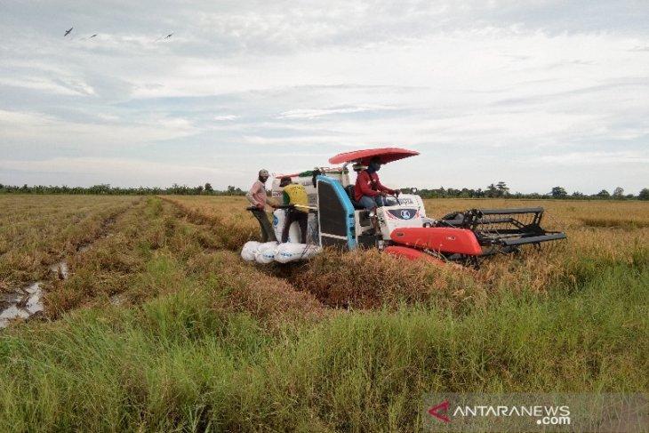 Nilai tukar petani di Kalteng alami kenaikan