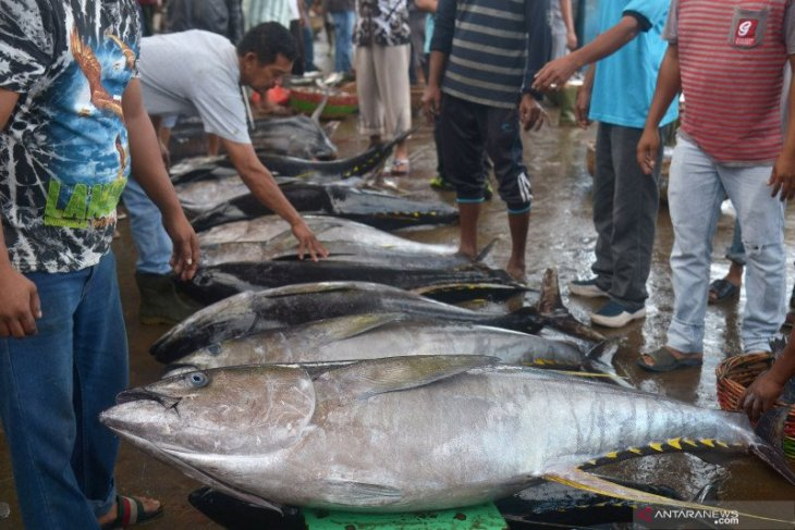 Five logistics corridors to boost access to east Indonesian fisheries