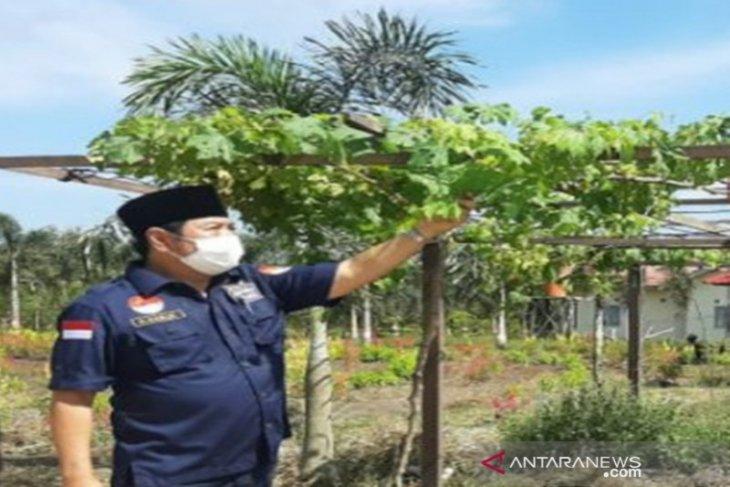 Barito Kuala kembangkan