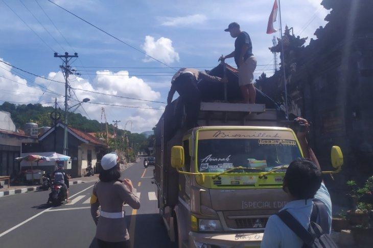 Polisi jamin Pelabuhan Padangbai bebas calo