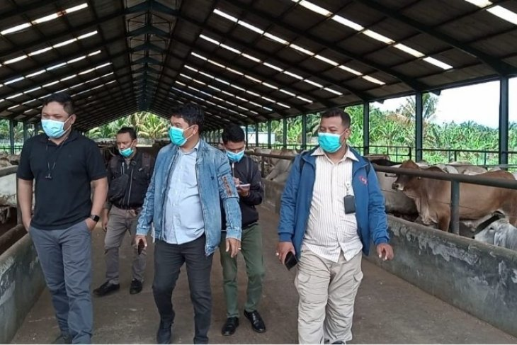 Jelang Lebaran 2021, Harga daging sapi segar mulai bergerak naik di Medan