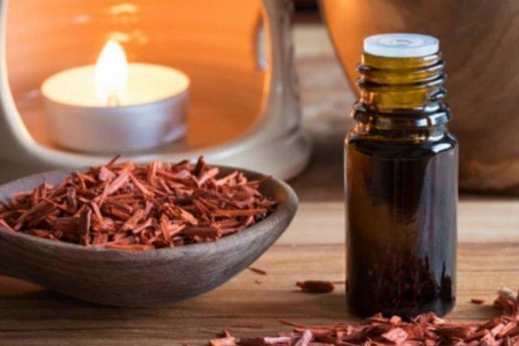Manfaat kayu cendana merah untuk atasi sakit kepala hingga sembuhkan luka