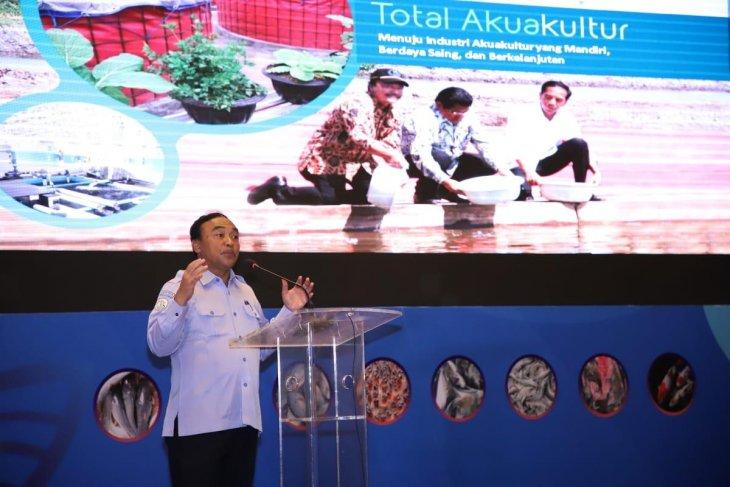 Dirjen KKP: Ikan kerapu dari Natuna jadi idola ekspor