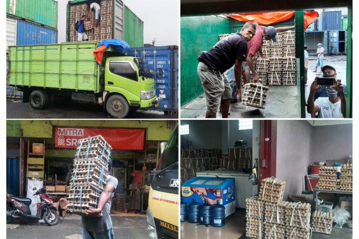 Disperindag Maluku - distributor distribusi 15 kontainer telur atasi kelangkaan