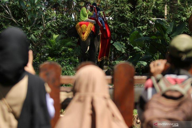 Libur Lebaran di Kebun Binatang Surabaya