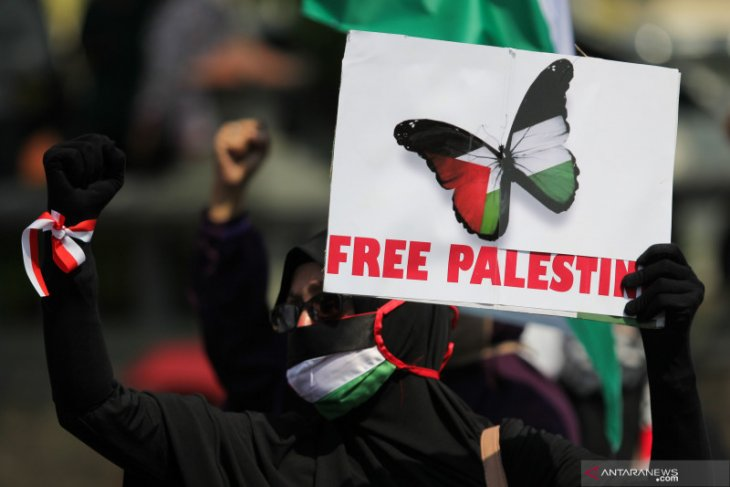 Indonesians join in global wave of support for Palestine