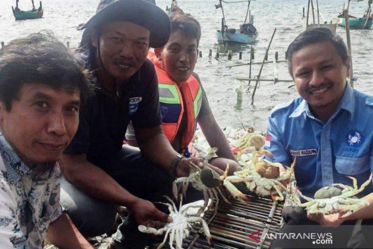 Perikanan rajungan Indonesia berkelanjutan dapat bantuan OSF Rp900 juta