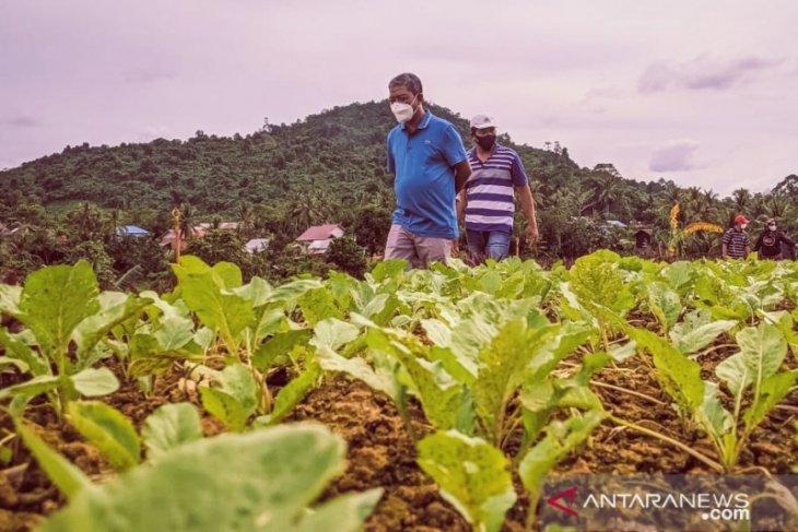 Penyaluran Dana Desa di Provinsi Kaltim baru 28,10 persen