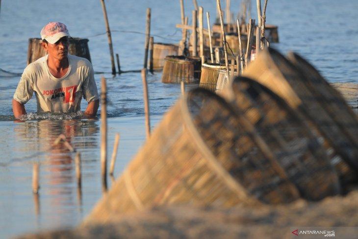 Nelayan Udang Pamekasan