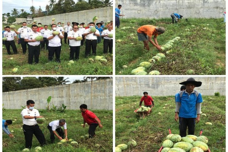 Lapas Sibolga kembali panen semangka 4 ton