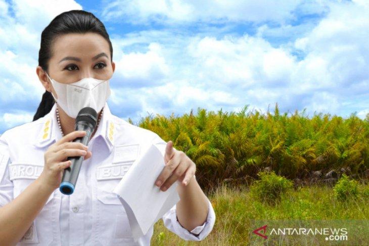 Pemerintah Kabupaten Landak evaluasi perizinan 51 perusahaan perkebunan