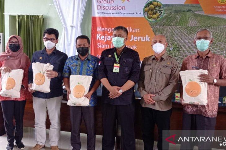 Pemprov Kalbar terus lakukan pengembalian kejayaan jeruk siam Sambas