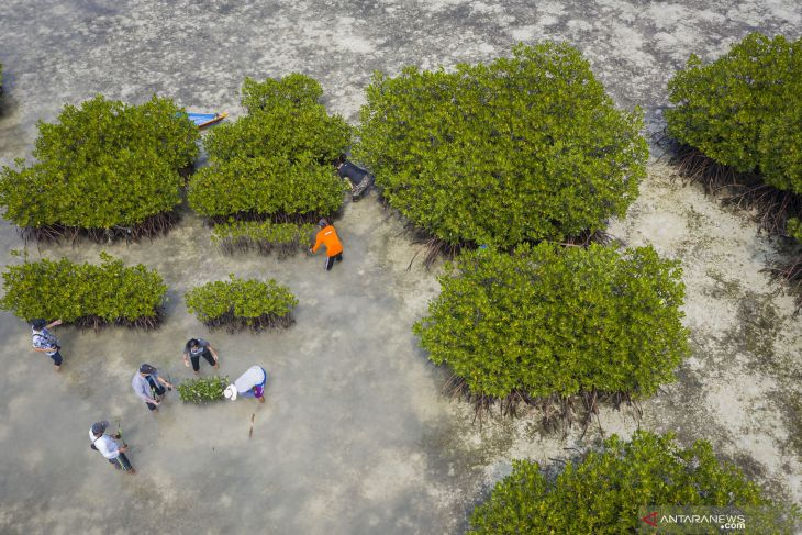 Jakarta strengthens role of fishers in preserving marine ecosystem