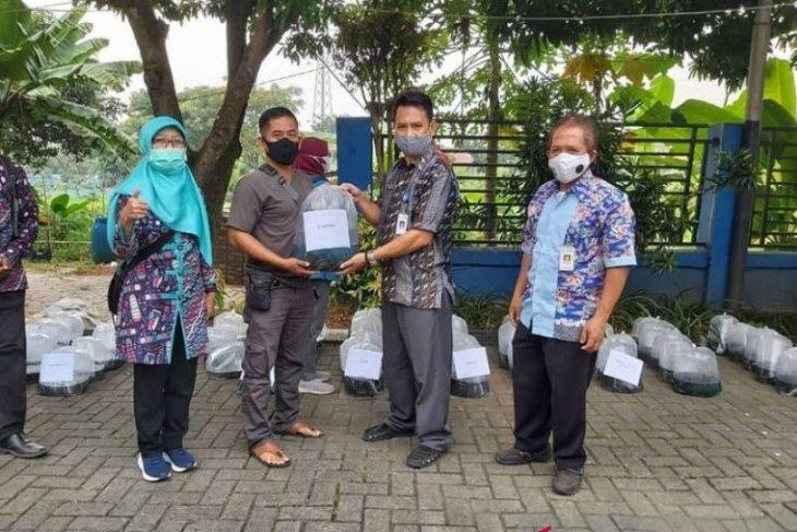 DKP Kota Tangerang distribusikan bantuan 104.000 benih lele