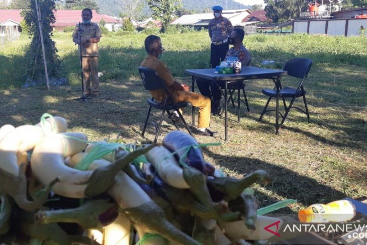 Wabup Kayong Utara apresiasi agro sinergi tani
