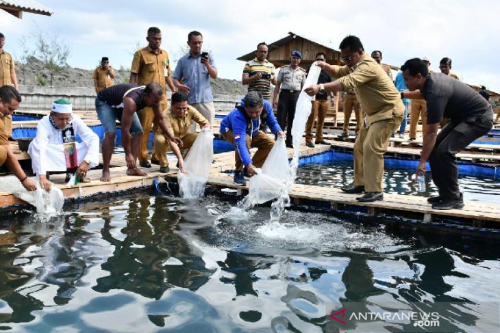 Banda Aceh miliki ratusan hektare lahan potensial budidaya udang