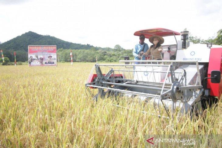 Kabupaten Landak menuju pertanian modern